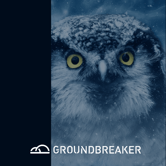 Image of Owl Symbolizing Wisdom and Strategy, overlay of a blue filter and the Groundbreaker logo